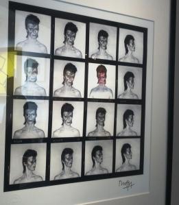 PV_Bowie_3Details