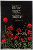 WW1 Poetry