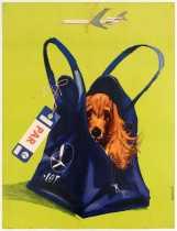 7 a Lot PolishAirline Dog